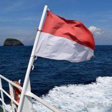 Январские новости с Бали
