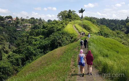 Тропа художников в Убуде (Campuhan Ridge Walk Ubud)