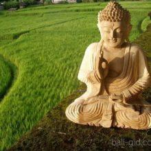 День рождения Будды, или Весак (Buddha's Birthday, или Hari Raya Waisak)